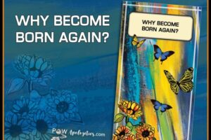 blog cover - WHY BORN AGAIN
